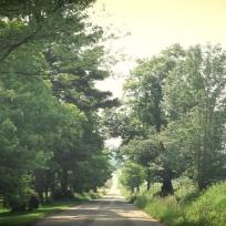 Biking in the Catskills