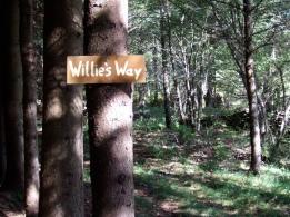Willie's Way