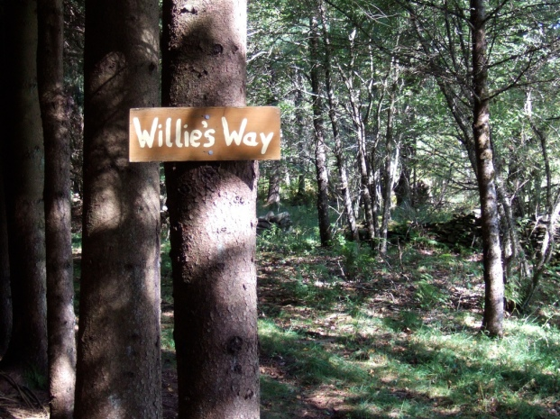Willie's Way
