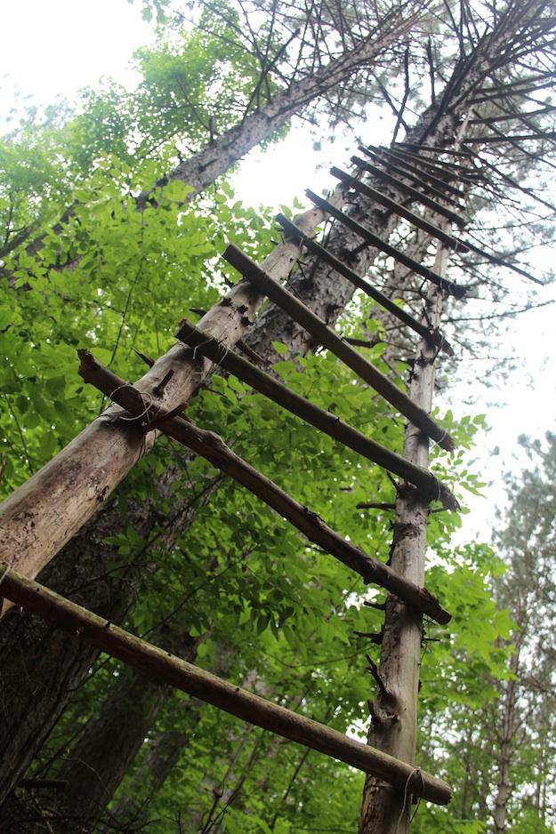 re-mark ladder